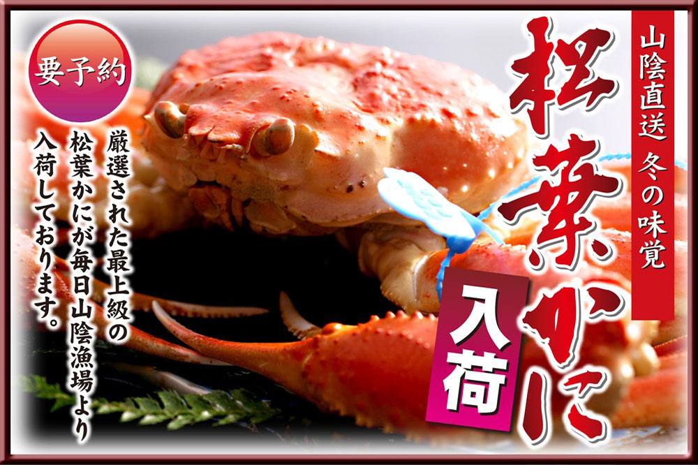 Direct delivery from San-in! Matsuba crab